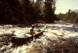 Machias River Canoe